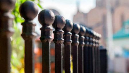Svarta staketknoppar